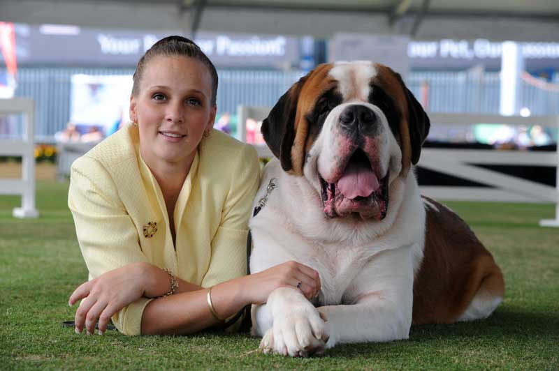 The Dog Show is the biggest and the best in Australia.