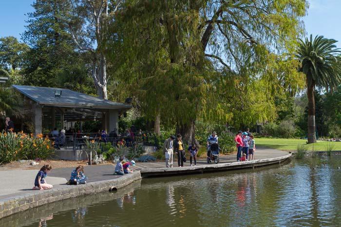 Royal Botanical Gardens, Melbourne. Photo: Roberto Seba, Tourism Victoria