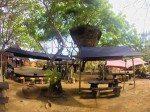 Tree house and shaded dining areas at Pirates Bay Bali.