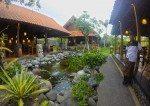 Tranquil surroundings Warung Mina Bali