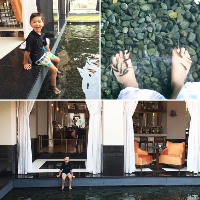 The fish spa in chic surroundings were a twice daily ritual for us