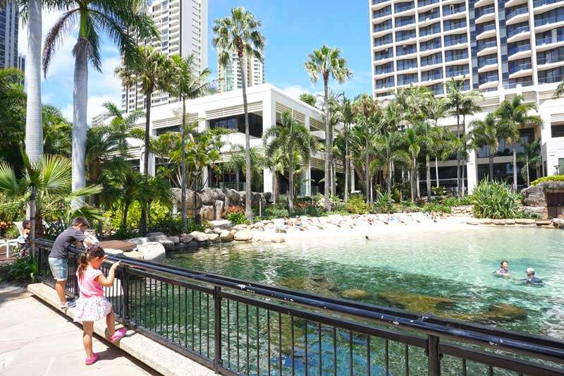 Spotting fish in the lagoon, Surfers Paradise Marriott Resort and Spa